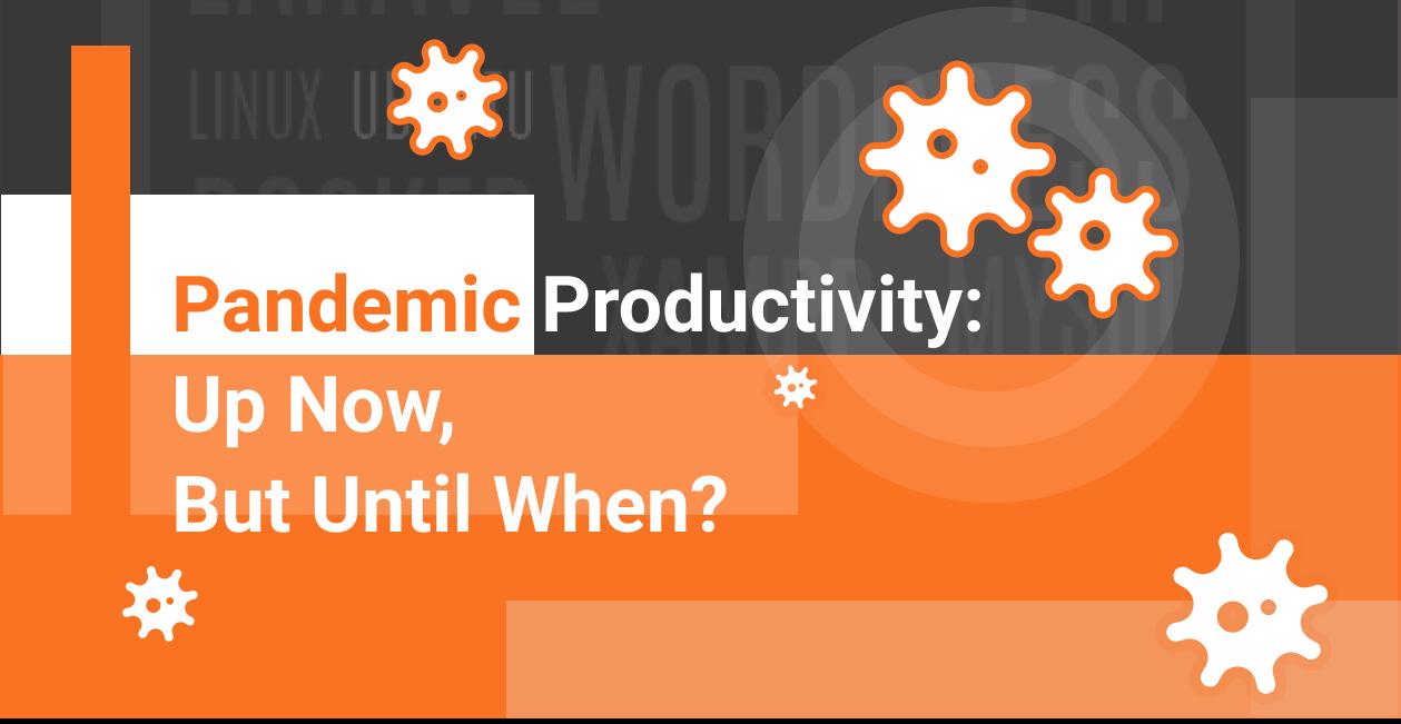 Pandemic Productivity: Up Now, But Until When?